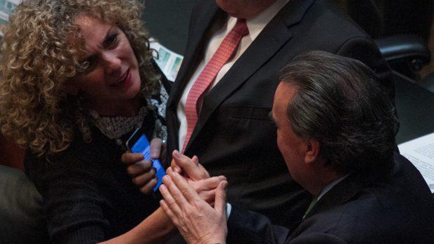 Luz María Beristain renuncia al PRD