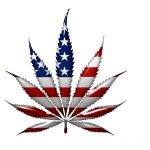 Endurece Fiscalía de EU la persecución criminal federal de la mariguana