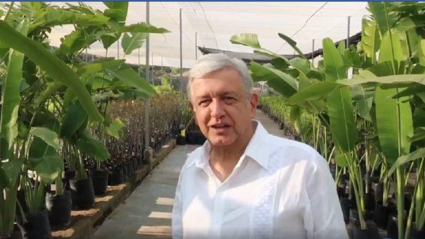 'El Bronco' emula a López Obrador con juego de balero en Twitter