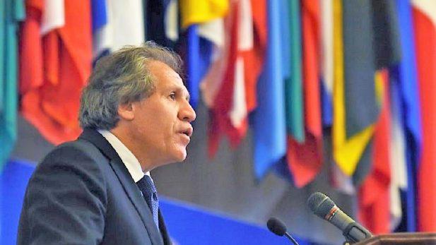 Preocupación de la OEA por violencia política en elecciones de México