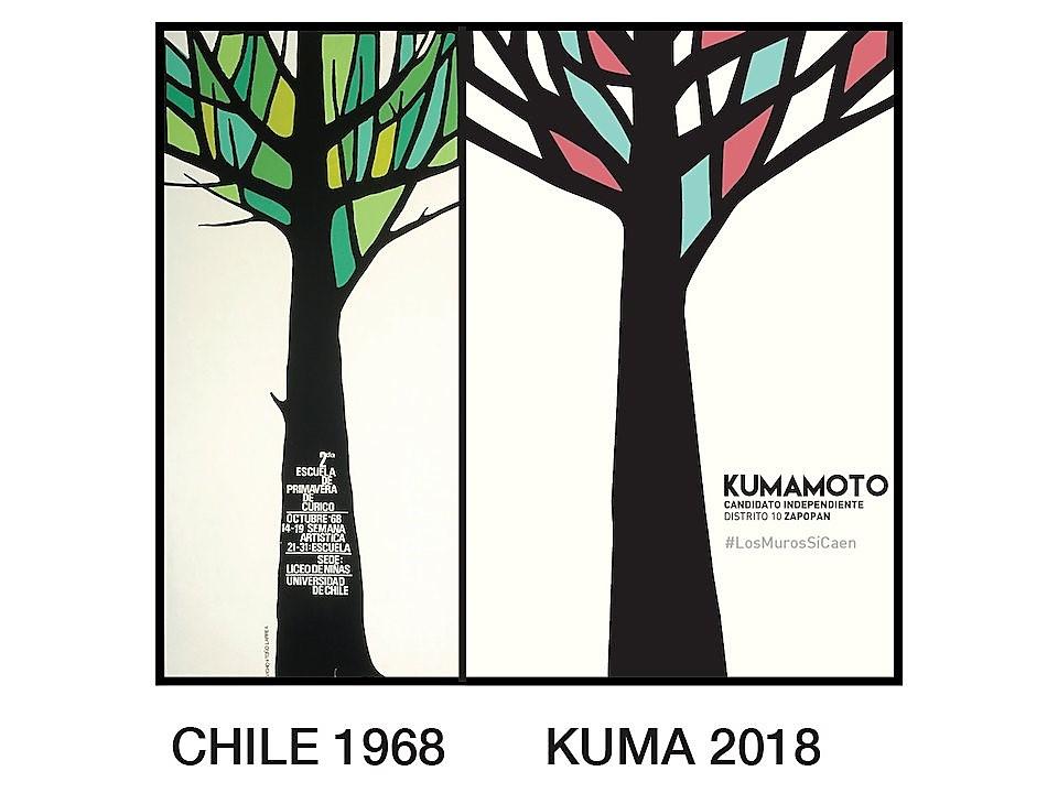 El arbol de kumamoto